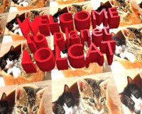 welcome-to-planet-lolcat.jpg
